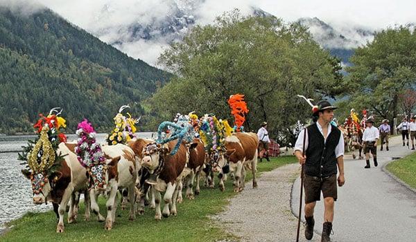 Dyrenes-hjemkomst-er-et-kæmpe-karneval-i-Østrig