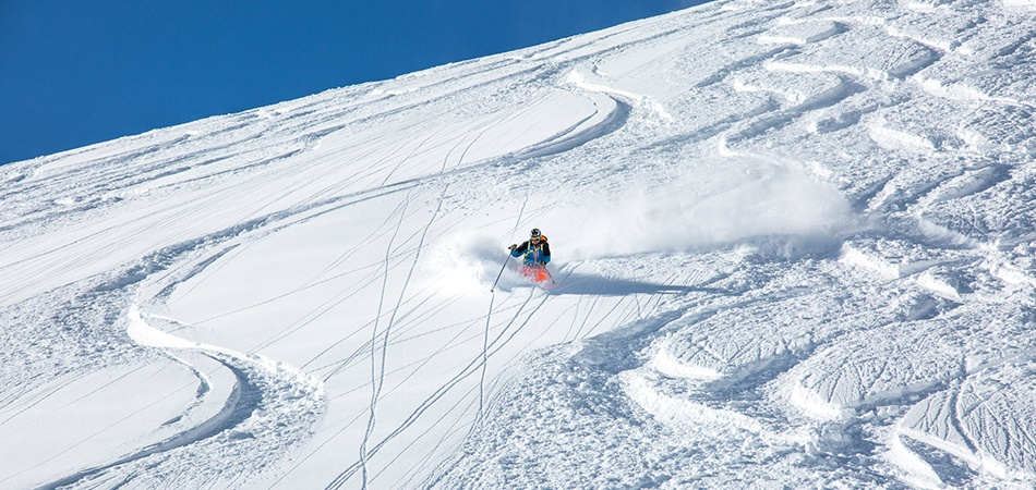 HubSpot_newsletter_PowderWeek
